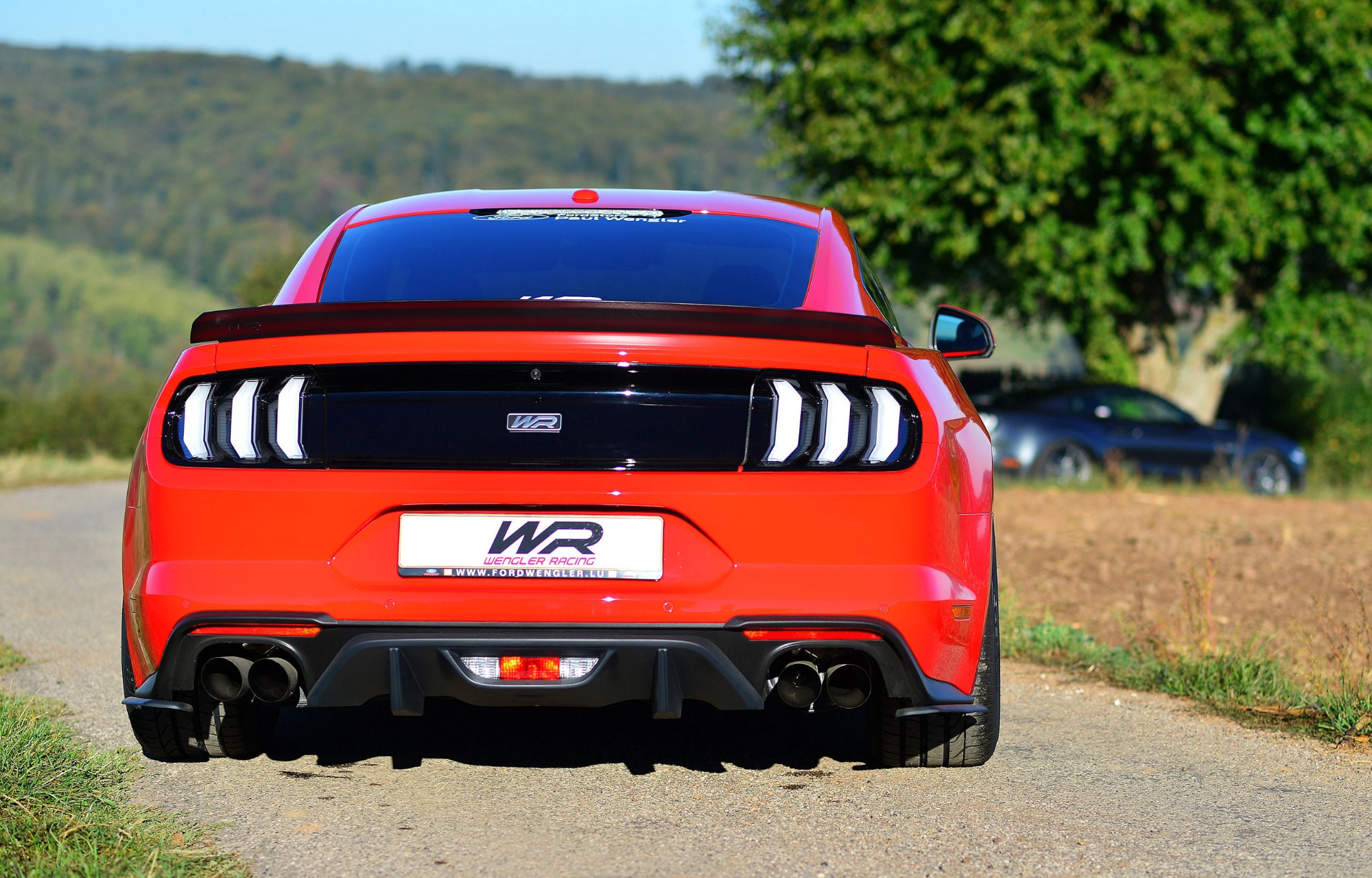 Ford Mustang Wengler Racing