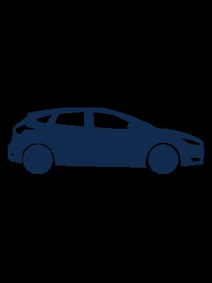Personenwagens Ford icon
