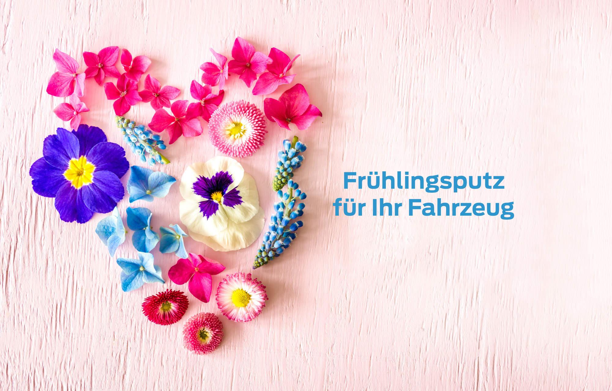 Frühlingsputz