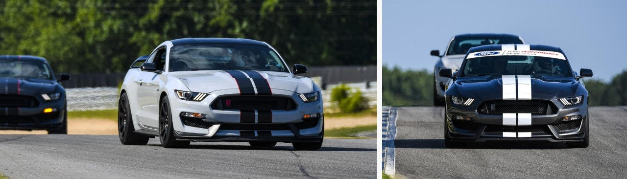 Ford Mustang Shelby GT350 MagneRide und TREMEC