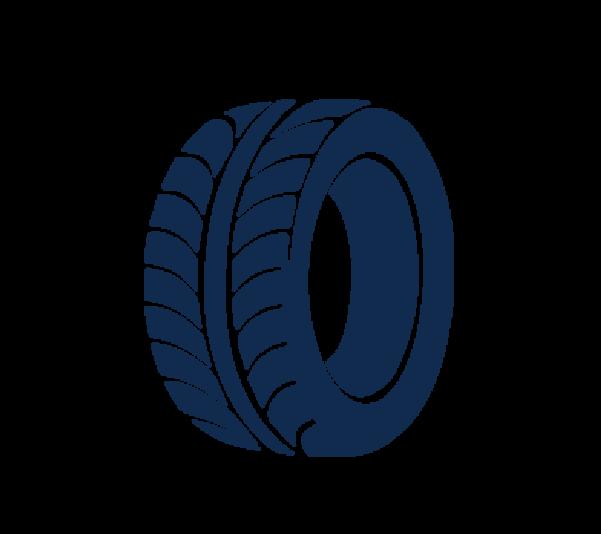 Ford økonomi dæk