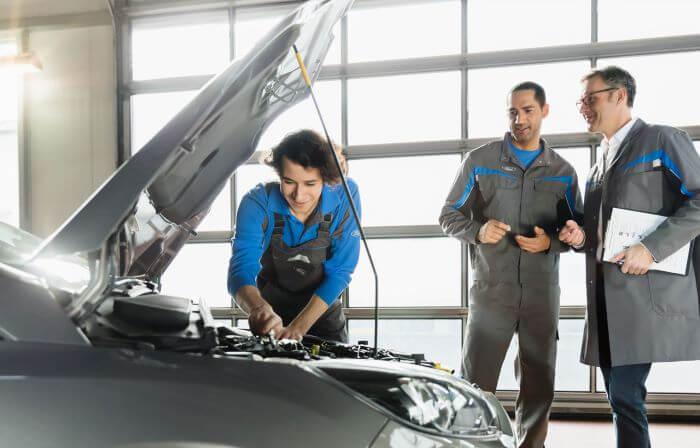 Ford Økonomi 5+ Dæk