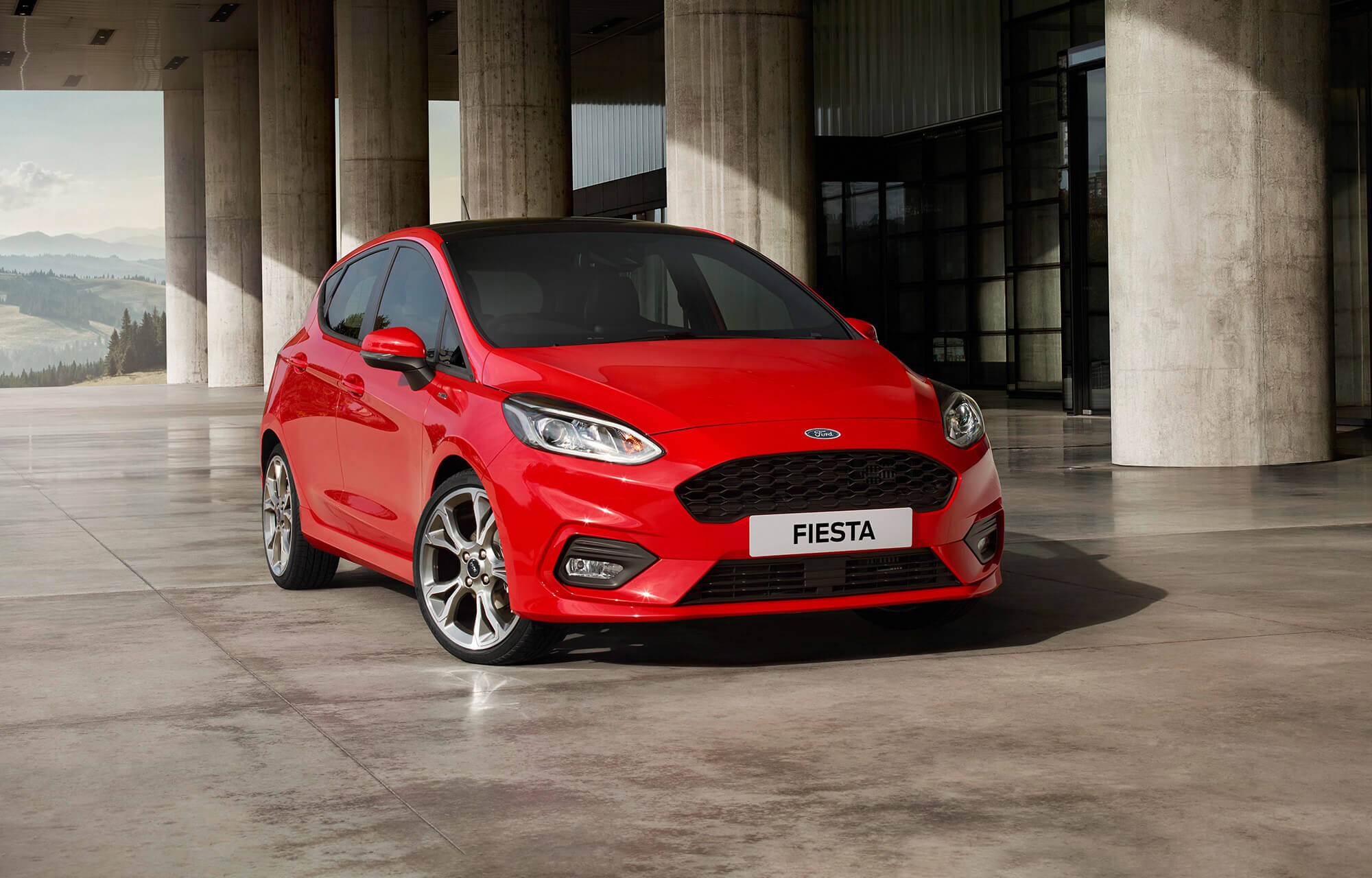Ford Fiesta Supagard