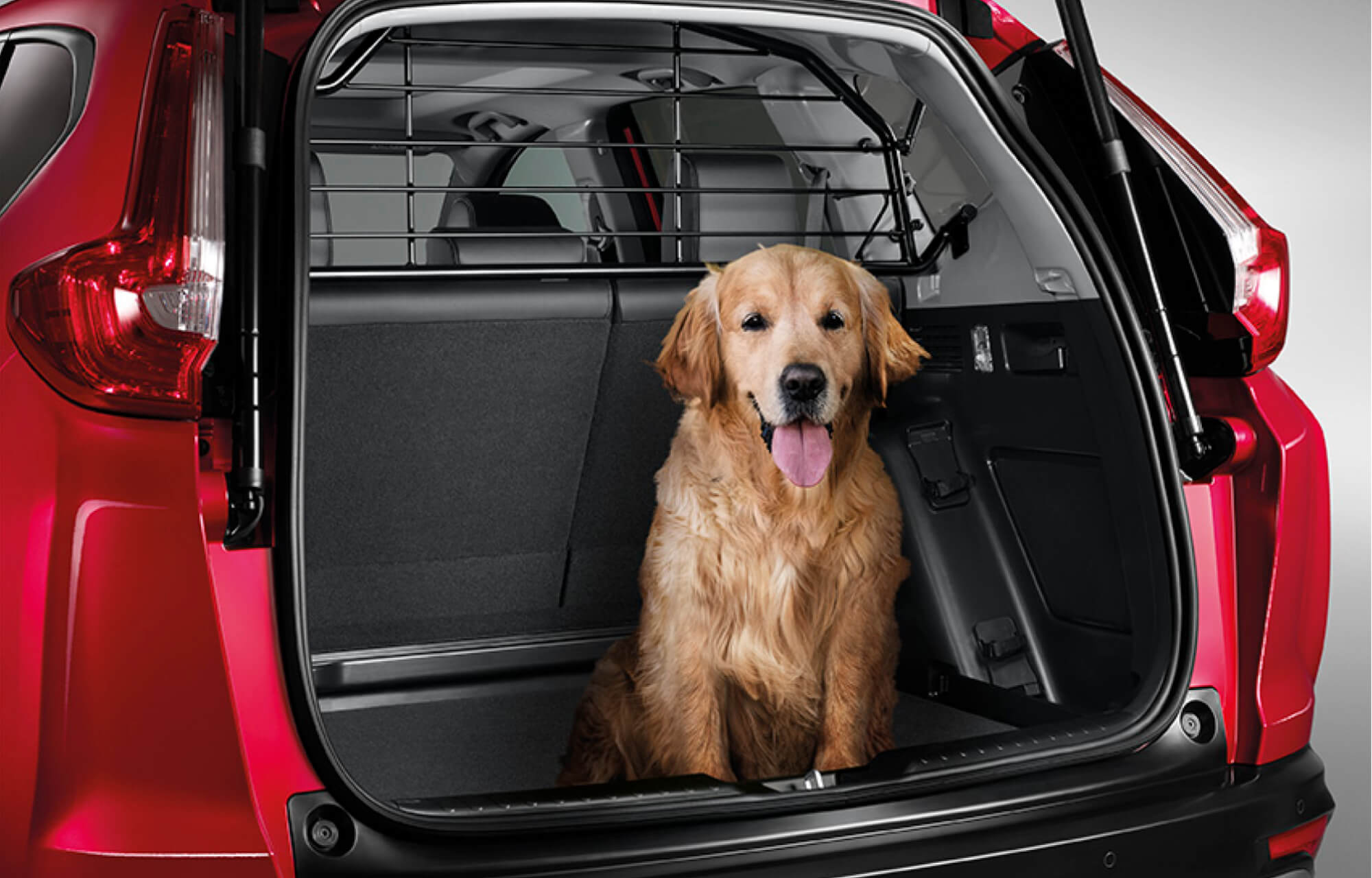 CR-V Dog Guard