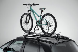 Jazz Hybrid Bicycle Carrier