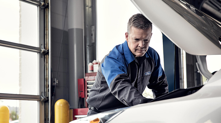 Vehicle Service promotions from Bay Ford Napier in Hawkes Bay